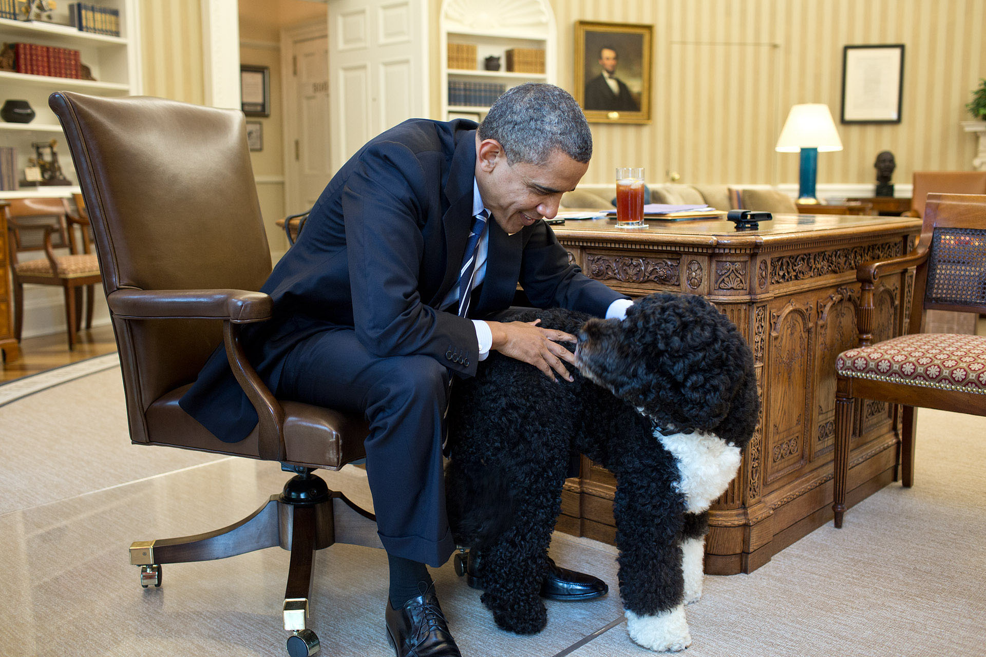 President Barack Obama pets Bo, the Obama family dog, in the Oval Office, June 21, 2012. (Official White House Photo by Pete Souza)